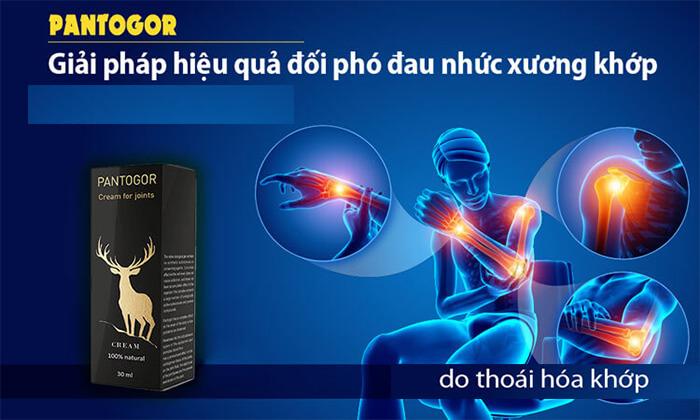san-pham-khac-pantogor-kem-boi-giam-dau-nhuc-xuong-khop-chinh-hang-nga-4773
